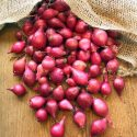 Onion Small / Red Onion / Sambar Onion / Ulli / Chinna Ulli