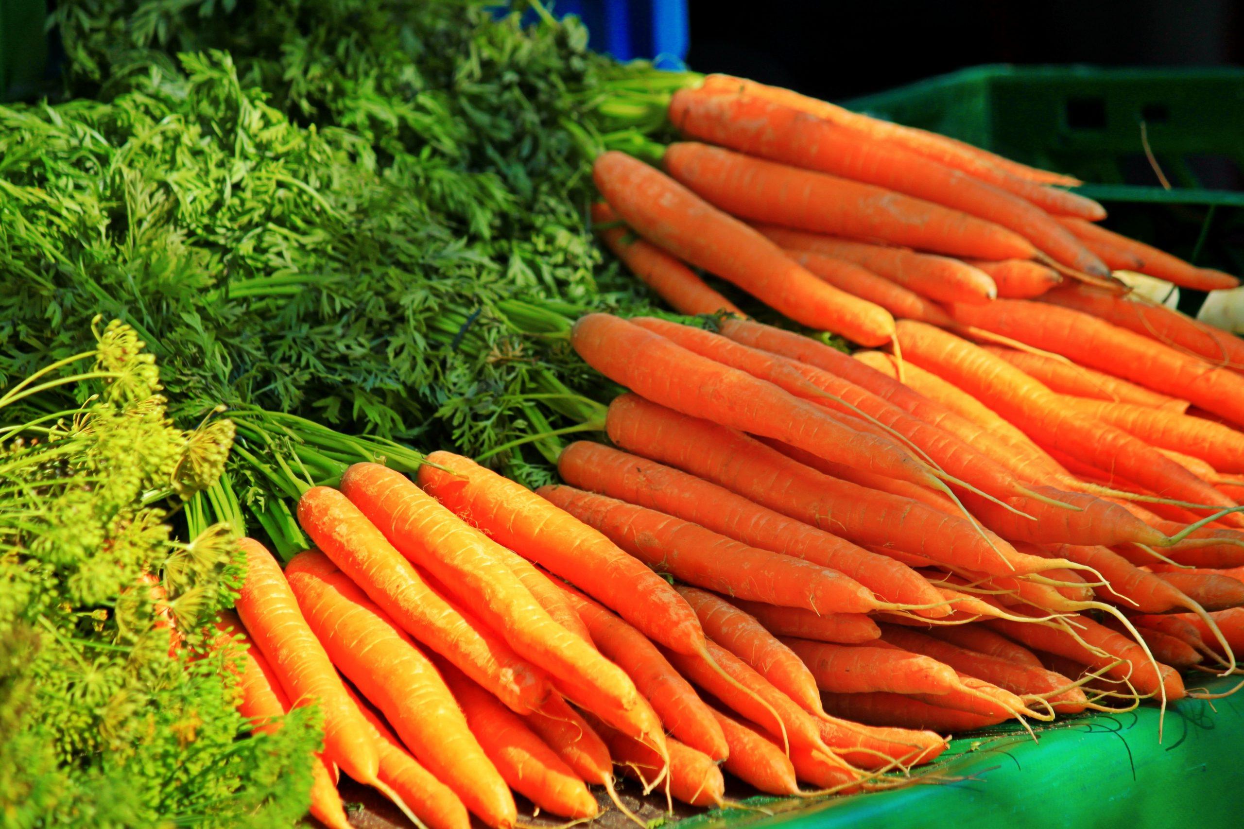 Carrot / Keraṭ / கேரட்