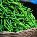 Green Chilli / Paccai Miḷakay / பச்சை மிளகாய் – 100g