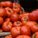 Apple Tomato / Apple Takkali /  ஆப்பிள் தக்காளி