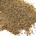 Ajwain Seeds / Omam / ஓமம் – 100g