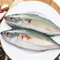Indian Mackerel – ஐயலை