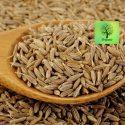 Cumin – Jeerakam – 100g – Organic