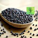 Mustard – Katuku – 100g – Organic