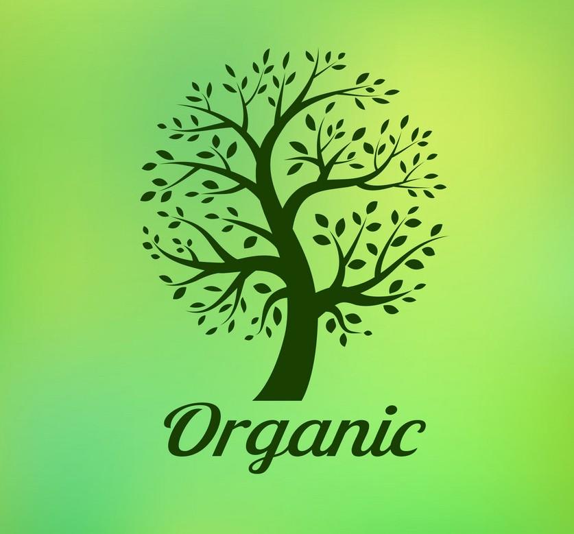 Ayurveda & Organic
