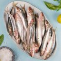 Sardine Fish / சாளை மீன்