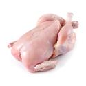 Chicken Tandoori – தந்தூரி சிக்கன் – 1Kg Approx ( Whole Piece)