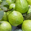 Guava – கொய்யாப் பழம்