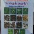 Kabasura Kudineer – கபசுர குடிநீர் – 50g
