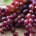 Grapes – திராட்சை